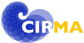 CIRMA University of Turin logo